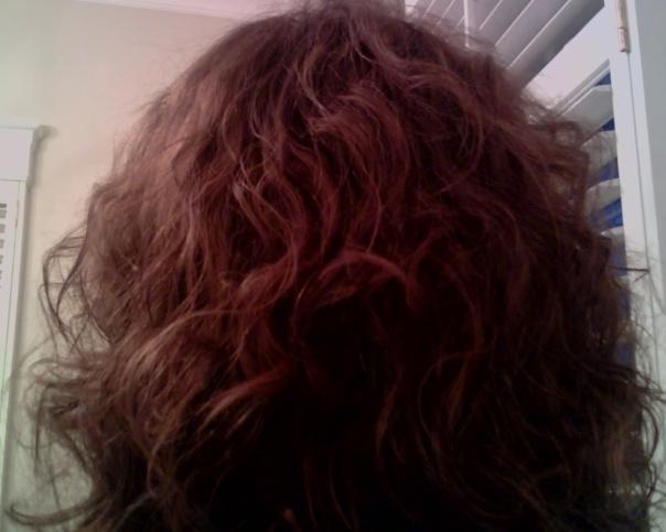 Hair_-_back