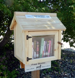 Little Free Library, ready to finish.