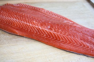 Fillet of steelhead Trout